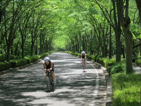 あづま運動公園(6月)