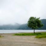 桧原湖(早稲沢)