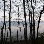 木立の向こうに磐梯山