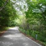 安ヶ森峠への道