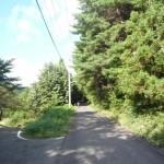 御霊櫃峠への道1