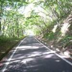 御霊櫃峠への道2
