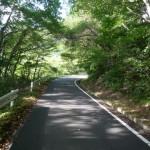 御霊櫃峠への道3