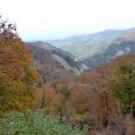白布峠の山形側