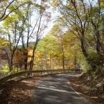 馬入峠への道