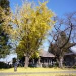 富岡の福生寺