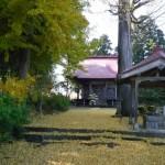 福泉寺の銀杏