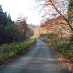 赤留峠への道