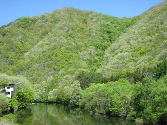 岩瀬湯本の川面