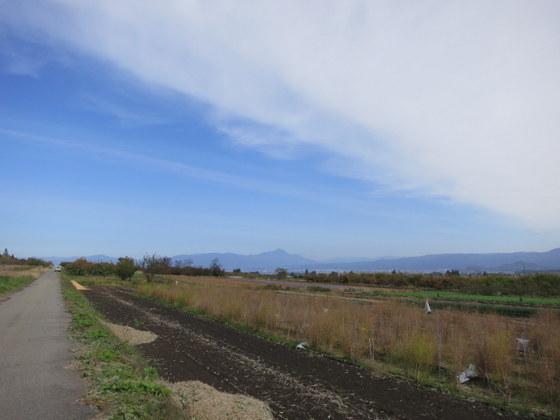 赤留の農地