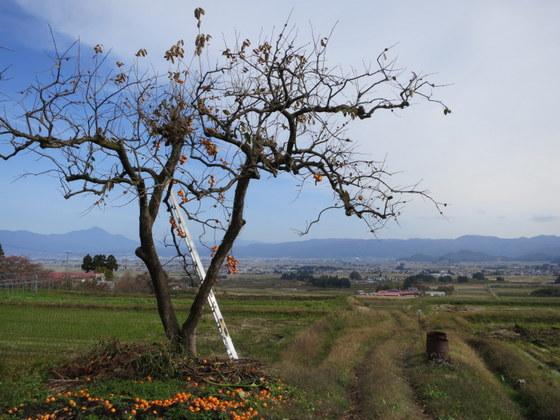柿と磐梯山