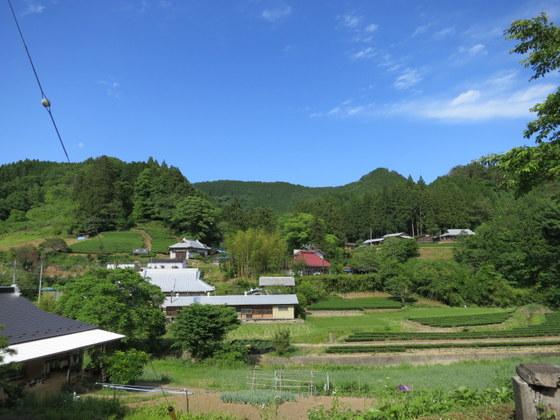 大子町は茶の産地