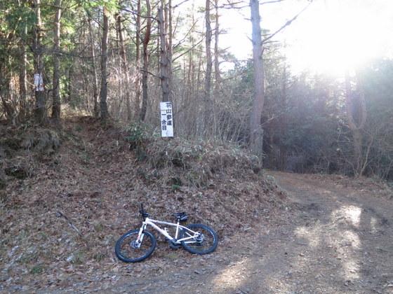 北登山道(右を進んだ)