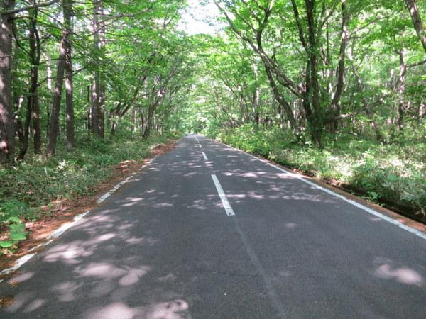 土湯旧道は夏でも涼しい