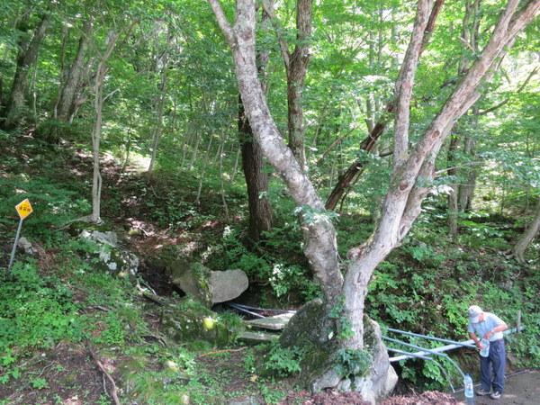 銚子ヶ滝近くの清水