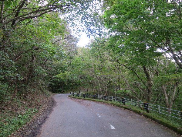 諏訪峠への道